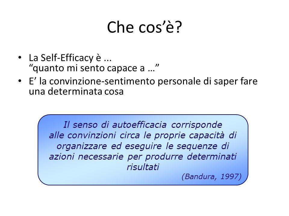 """Che cos'è? La Self-Efficacy è... """"quanto mi sento capace a …"""" E' la convinzione-sentimento personale di saper fare una determinata cosa Il senso di au"""