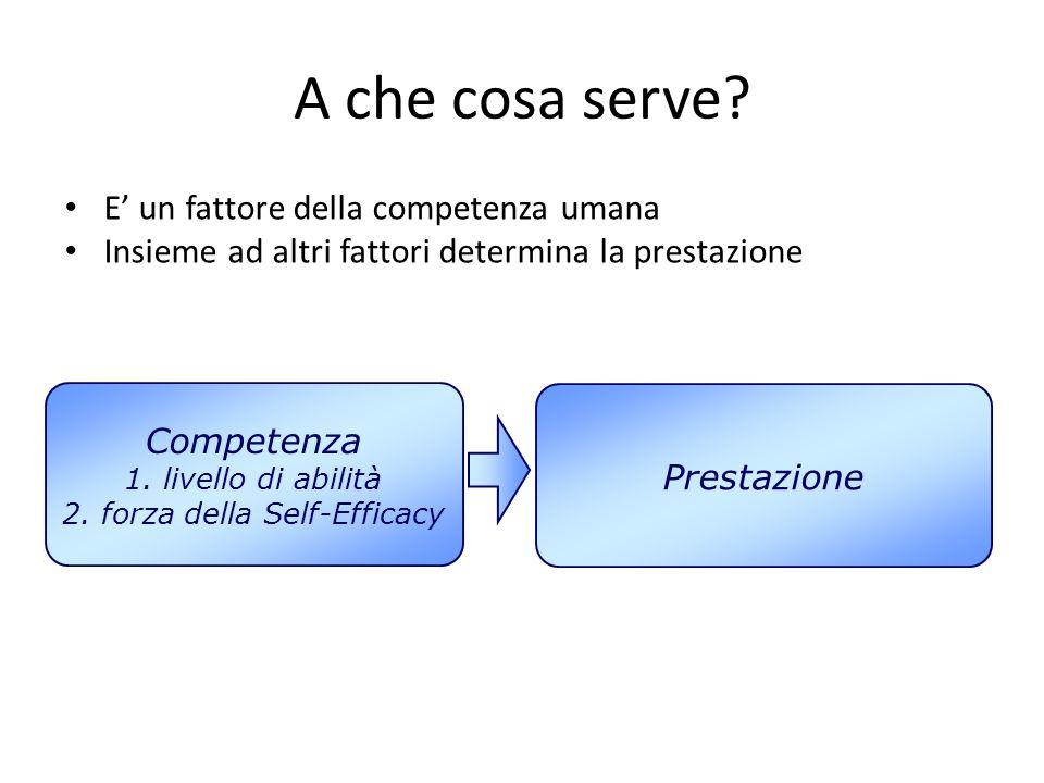 A che cosa serve? E' un fattore della competenza umana Insieme ad altri fattori determina la prestazione Competenza 1. livello di abilità 2. forza del