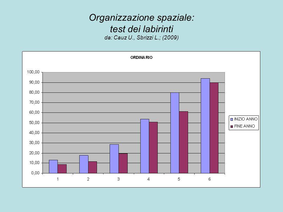 Organizzazione spaziale: test dei labirinti da: Cauz U., Sbrizzi L.; (2009)