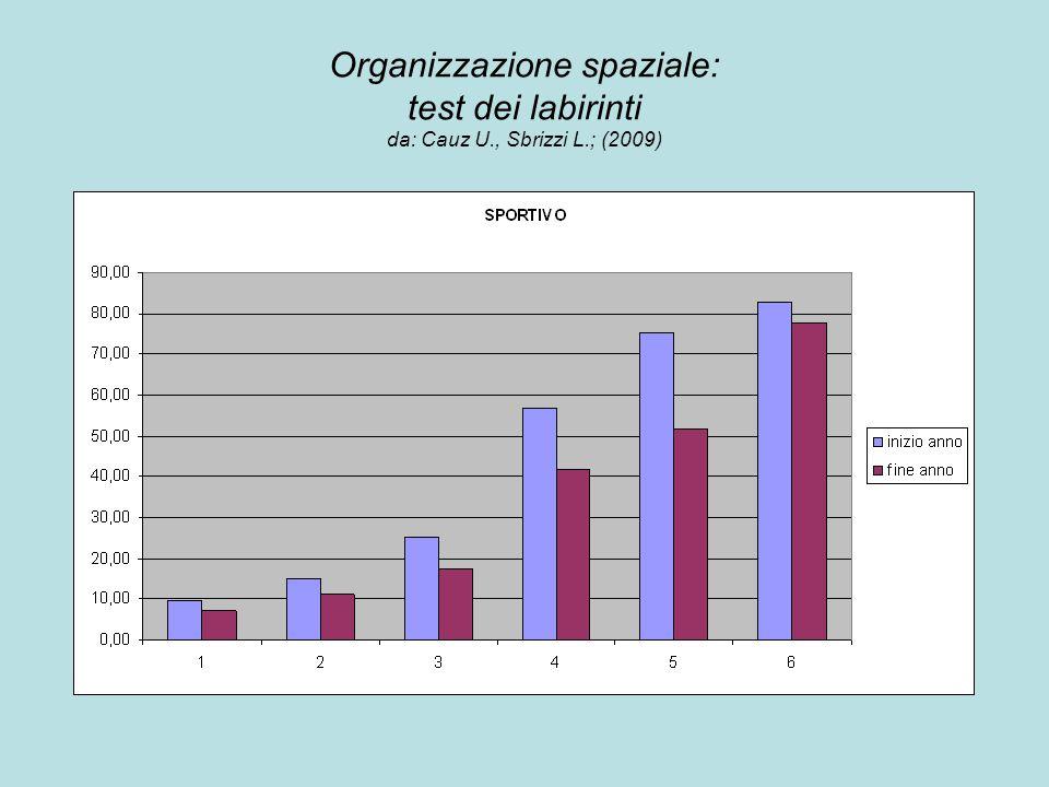 Organizzazione spaziale: test dei labirinti da: Cauz U., Sbrizzi L.; (2009) inizio anno