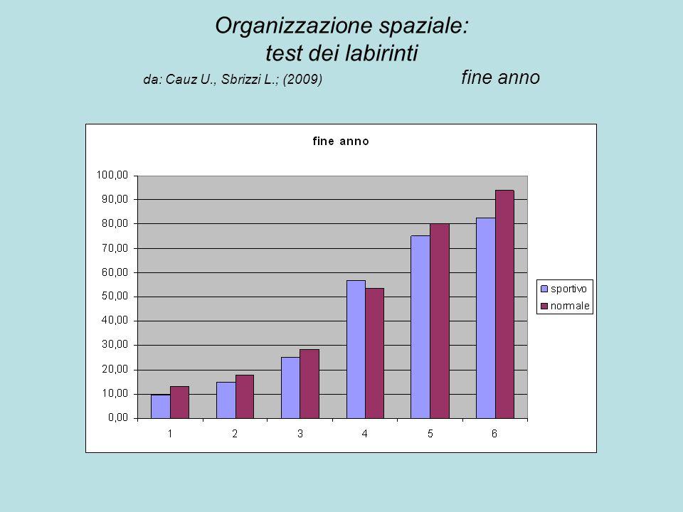 Organizzazione spaziale: test dei labirinti da: Cauz U., Sbrizzi L.; (2009) fine anno