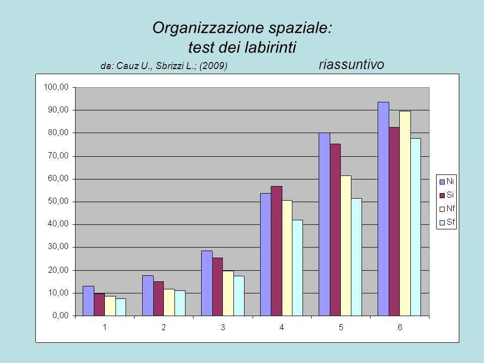 Organizzazione spaziale: test dei labirinti da: Cauz U., Sbrizzi L.; (2009) riassuntivo