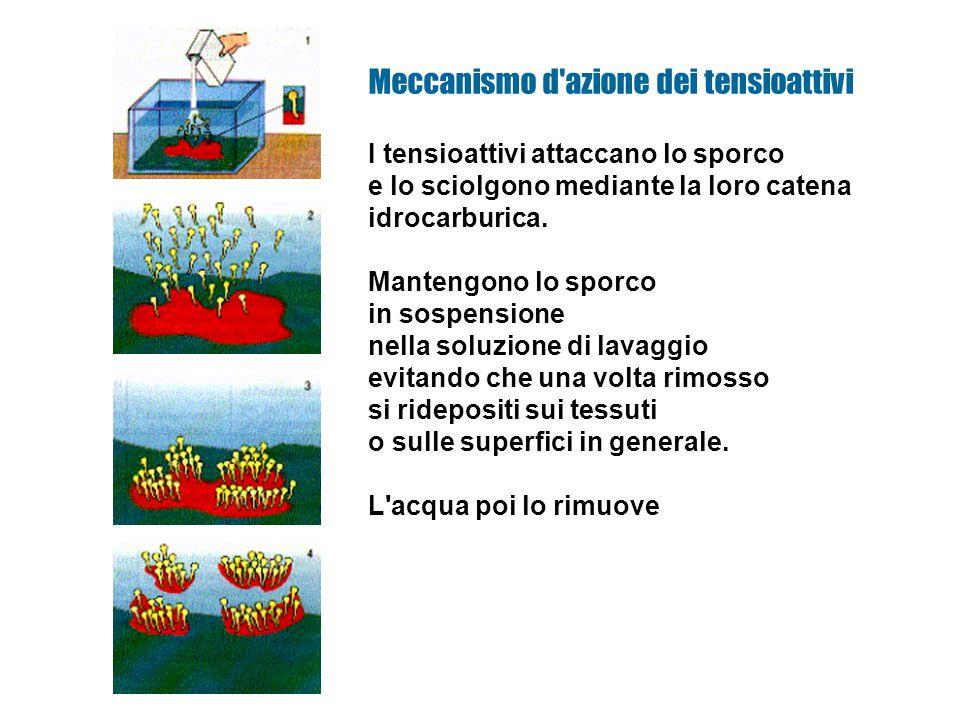 I tensioattivi attaccano lo sporco e lo sciolgono mediante la loro catena idrocarburica.