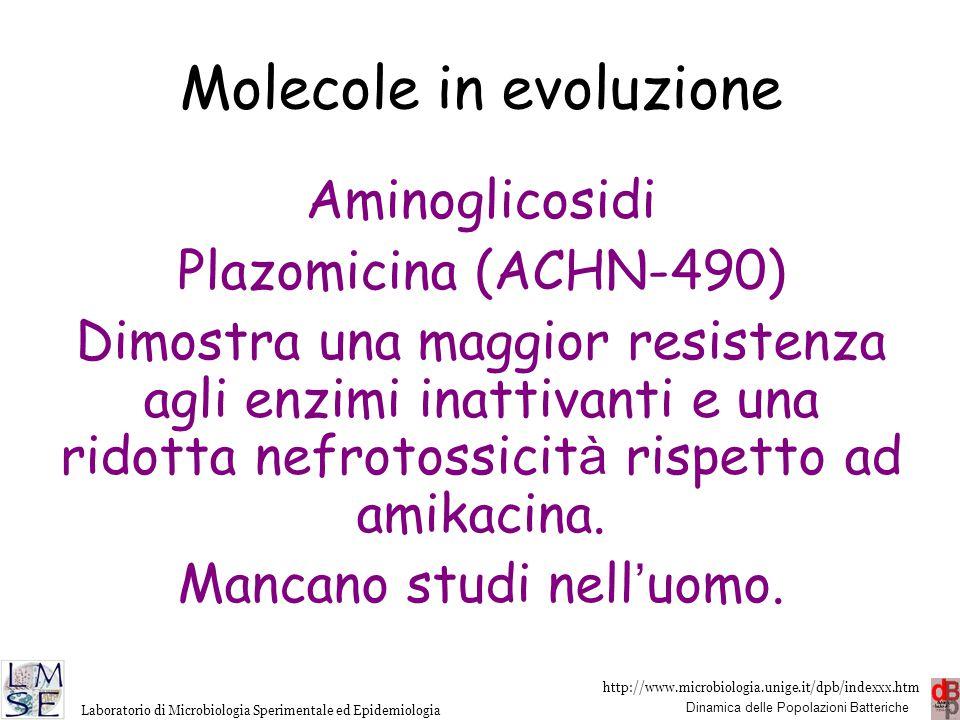 http://www.microbiologia.unige.it/dpb/indexxx.htm Dinamica delle Popolazioni Batteriche Laboratorio di Microbiologia Sperimentale ed Epidemiologia Mol