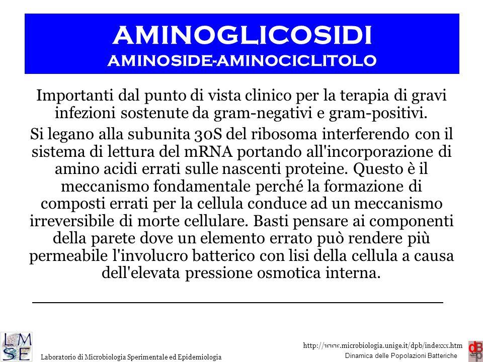 http://www.microbiologia.unige.it/dpb/indexxx.htm Dinamica delle Popolazioni Batteriche Laboratorio di Microbiologia Sperimentale ed Epidemiologia Imp