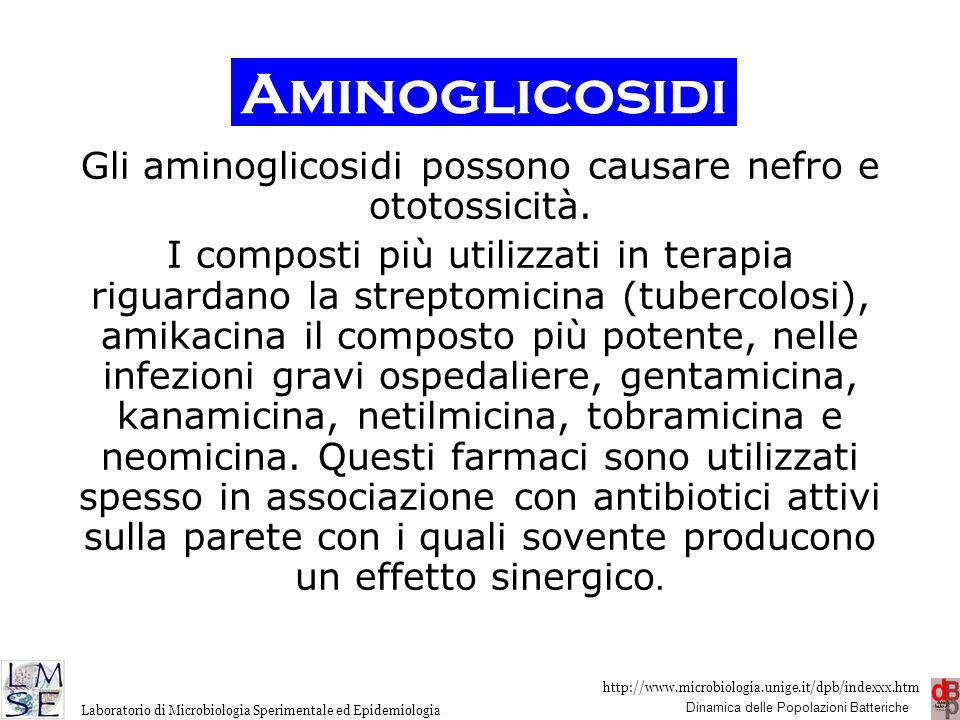 http://www.microbiologia.unige.it/dpb/indexxx.htm Dinamica delle Popolazioni Batteriche Laboratorio di Microbiologia Sperimentale ed Epidemiologia Gli
