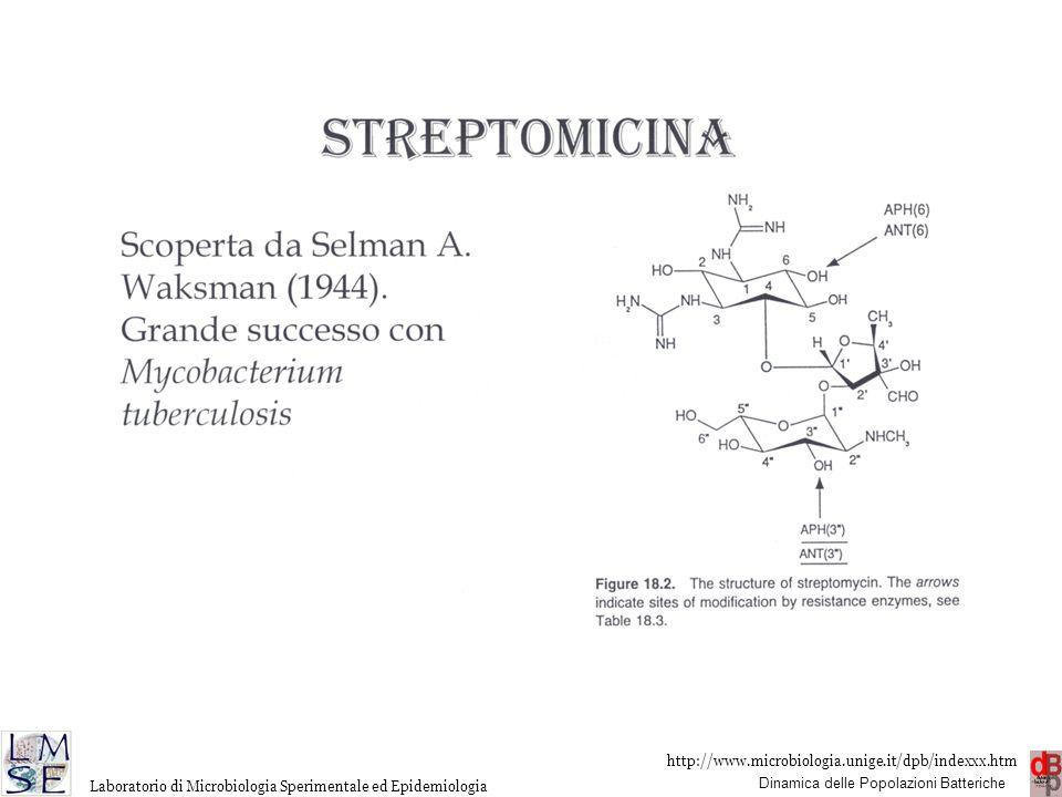 http://www.microbiologia.unige.it/dpb/indexxx.htm Dinamica delle Popolazioni Batteriche Laboratorio di Microbiologia Sperimentale ed Epidemiologia
