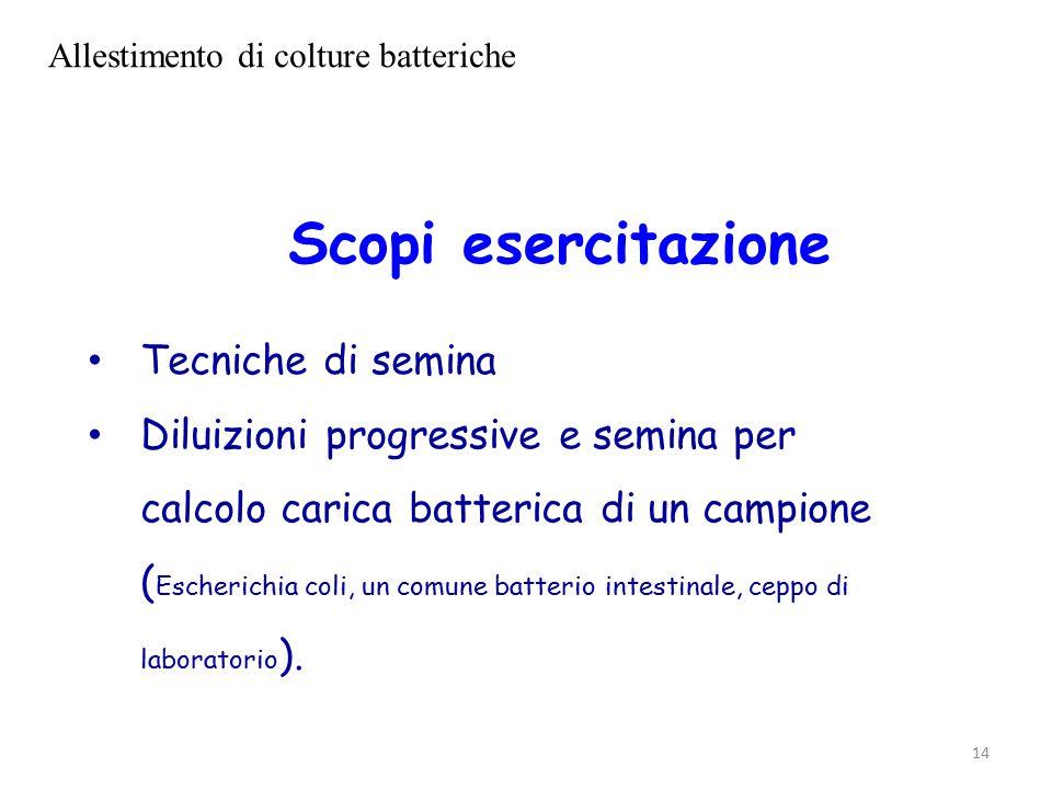 14 Scopi esercitazione Tecniche di semina Diluizioni progressive e semina per calcolo carica batterica di un campione ( Escherichia coli, un comune batterio intestinale, ceppo di laboratorio ).