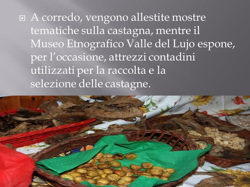  A corredo, vengono allestite mostre tematiche sulla castagna, mentre il Museo Etnografico Valle del Lujo espone, per l'occasione, attrezzi contadini utilizzati per la raccolta e la selezione delle castagne.