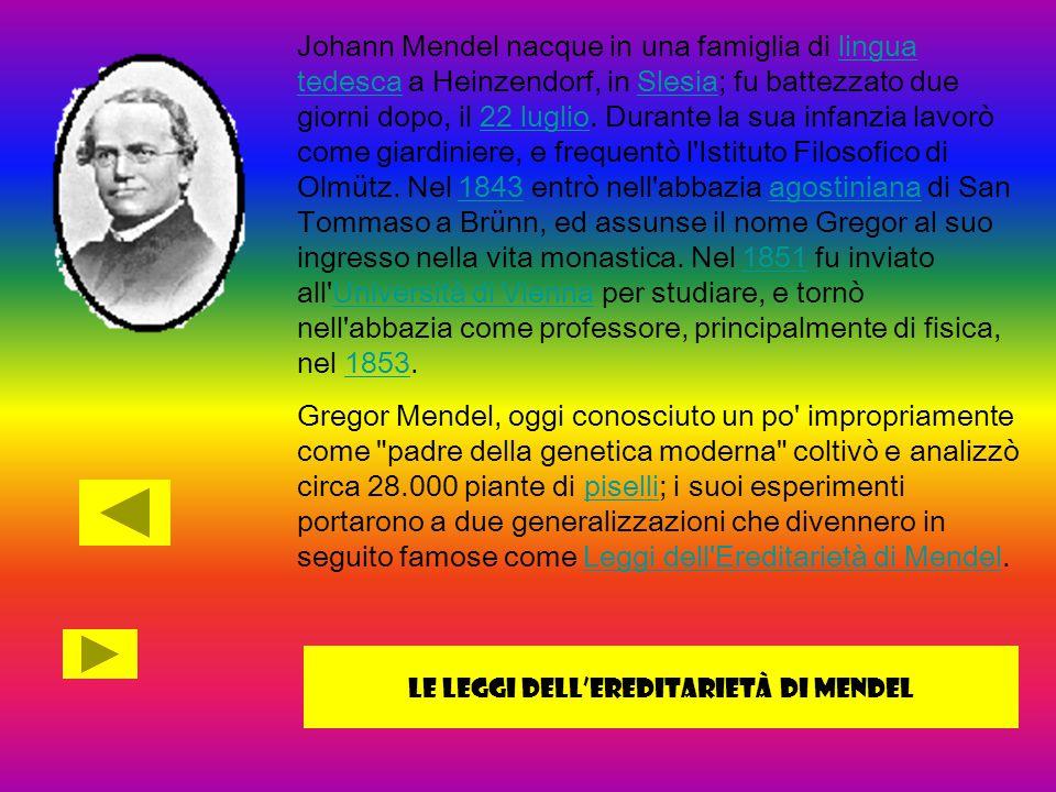 Johann Mendel nacque in una famiglia di lingua tedesca a Heinzendorf, in Slesia; fu battezzato due giorni dopo, il 22 luglio. Durante la sua infanzia