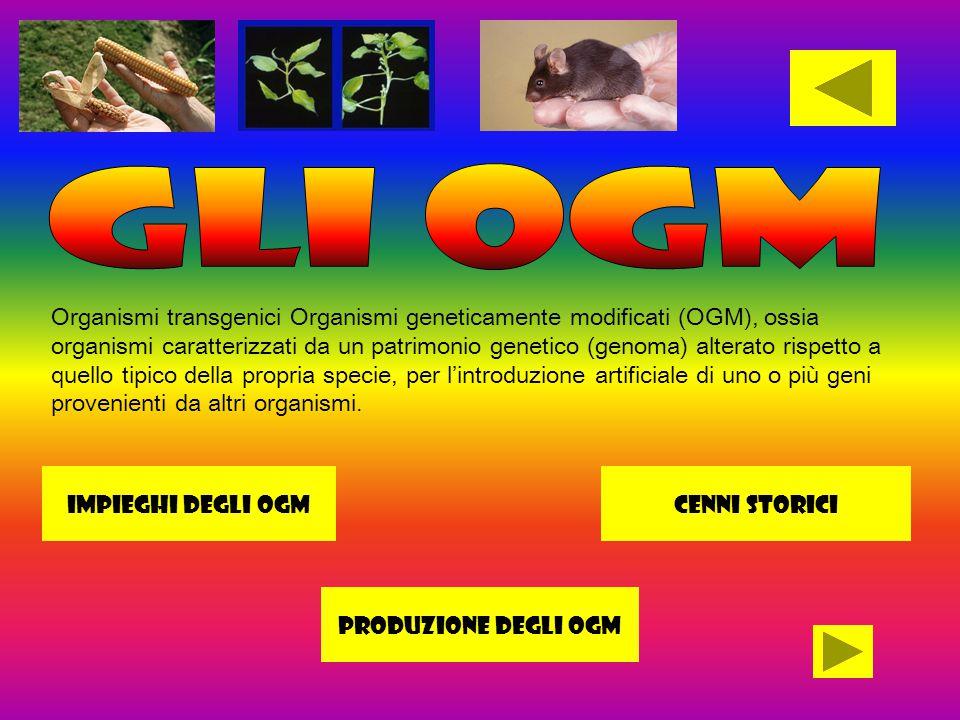 Organismi transgenici Organismi geneticamente modificati (OGM), ossia organismi caratterizzati da un patrimonio genetico (genoma) alterato rispetto a quello tipico della propria specie, per l'introduzione artificiale di uno o più geni provenienti da altri organismi.