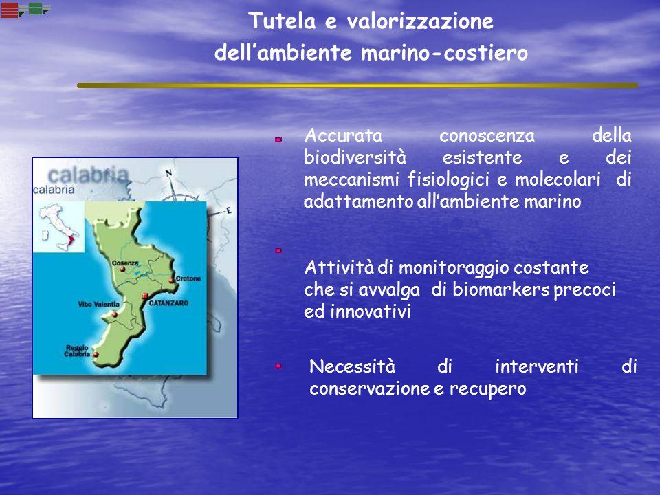 Tutela e valorizzazione dell'ambiente marino-costiero Attività di monitoraggio costante che si avvalga di biomarkers precoci ed innovativi Necessità d