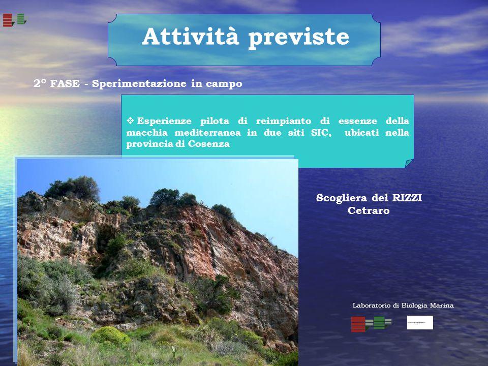 Attività previste  Esperienze pilota di reimpianto di essenze della macchia mediterranea in due siti SIC, ubicati nella provincia di Cosenza Scoglier