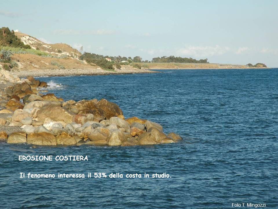Il fenomeno interessa il 53% della costa in studio. EROSIONE COSTIERA Foto T. Mingozzi