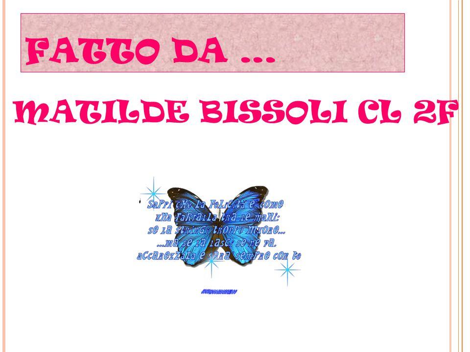 FATTO DA … MATILDE BISSOLI CL 2F as.2014-2015