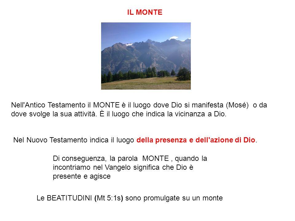 Nell Antico Testamento il MONTE è il luogo dove Dio si manifesta (Mosé) o da dove svolge la sua attività.