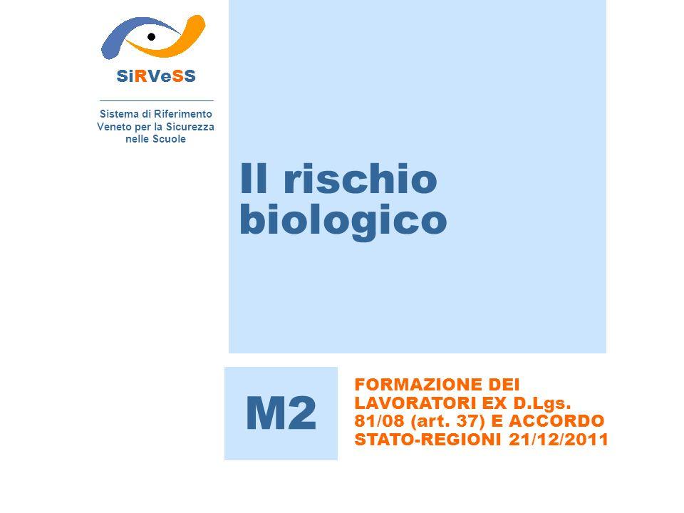 Il rischio biologico SiRVeSS Sistema di Riferimento Veneto per la Sicurezza nelle Scuole M2 FORMAZIONE DEI LAVORATORI EX D.Lgs.