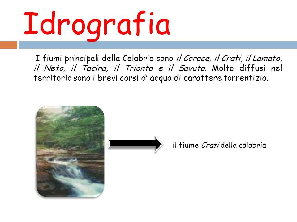 Idrografia I fiumi principali della Calabria sono il Corace, il Crati, il Lamato, il Neto, il Tacina, il Trionto e il Savuto.