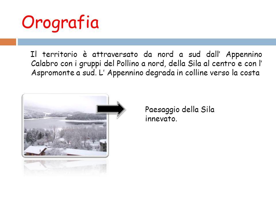 Orografia Il territorio è attraversato da nord a sud dall' Appennino Calabro con i gruppi del Pollino a nord, della Sila al centro e con l' Aspromonte a sud.