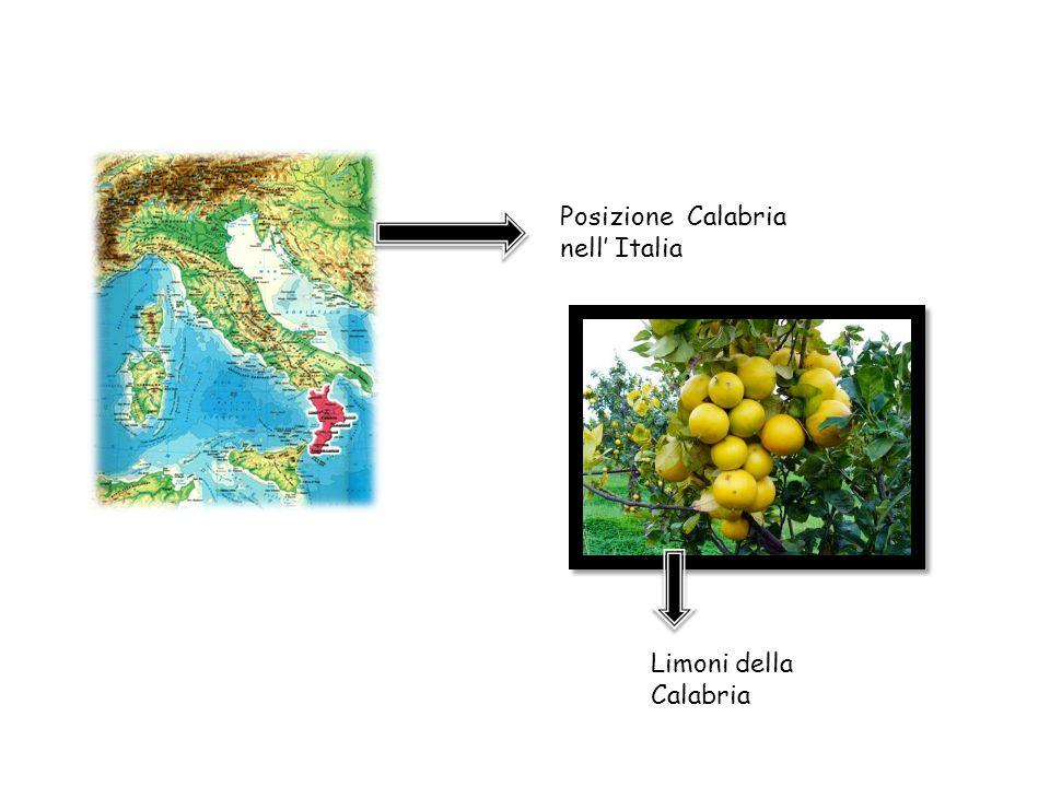 Posizione Calabria nell' Italia Limoni della Calabria