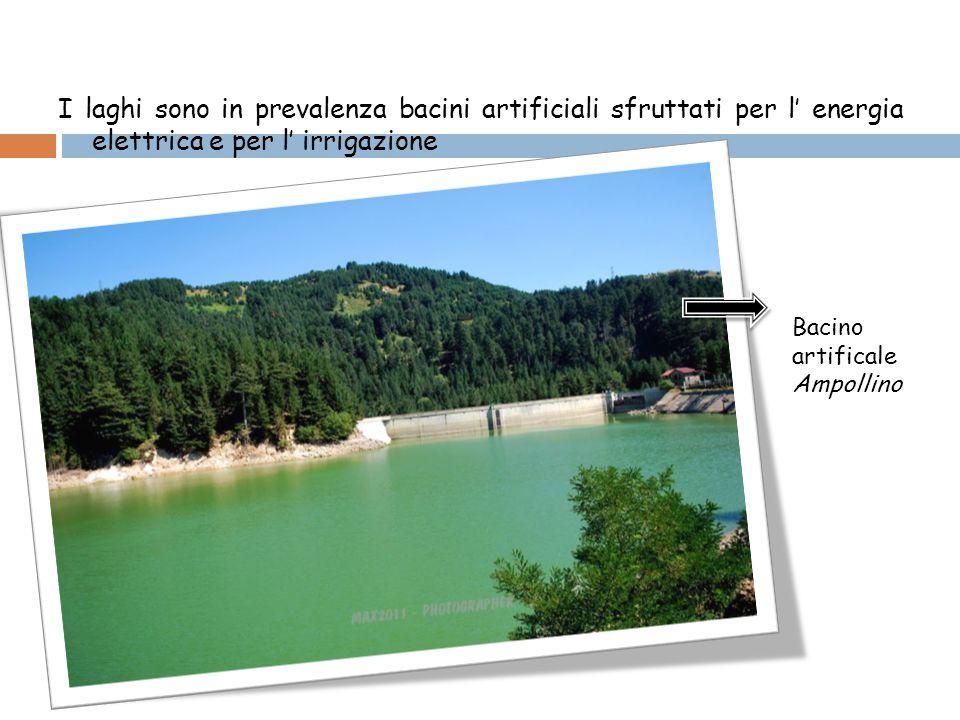 I laghi sono in prevalenza bacini artificiali sfruttati per l' energia elettrica e per l' irrigazione Bacino artificale Ampollino