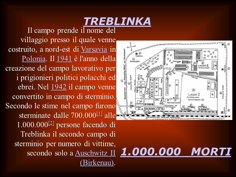 TREBLINKA 1.000.000 MORTI Il campo prende il nome del villaggio presso il quale venne costruito, a nord-est di Varsavia in Polonia. Il 1941 è l'anno d