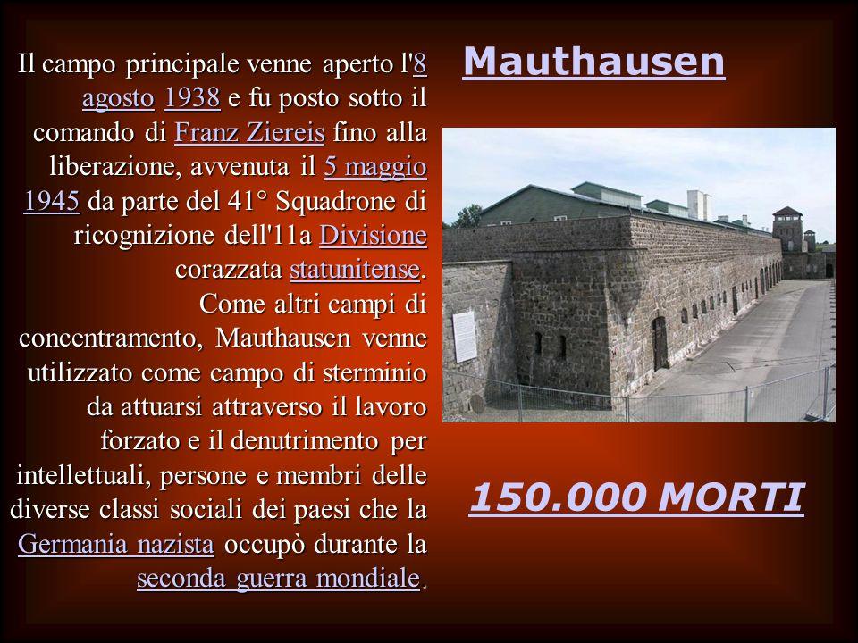 Mauthausen 150.000 MORTI Il campo principale venne aperto l 8 agosto 1938 e fu posto sotto il comando di Franz Ziereis fino alla liberazione, avvenuta il 5 maggio 1945 da parte del 41° Squadrone di ricognizione dell 11a Divisione corazzata statunitense.