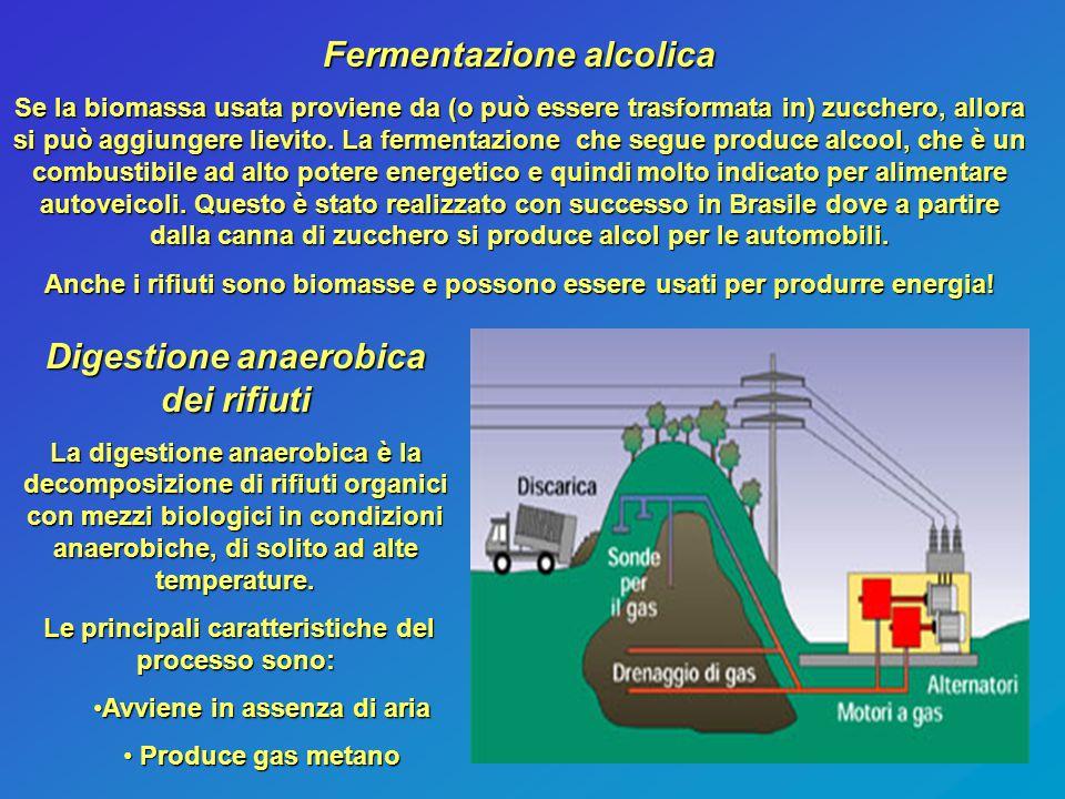 Fermentazione alcolica Se la biomassa usata proviene da (o può essere trasformata in) zucchero, allora si può aggiungere lievito. La fermentazione che
