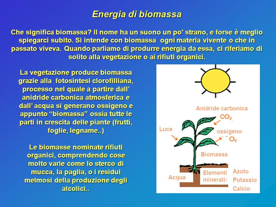 Energia di biomassa Che significa biomassa? Il nome ha un suono un po' strano, e forse è meglio spiegarci subito. Si intende con biomassa ogni materia