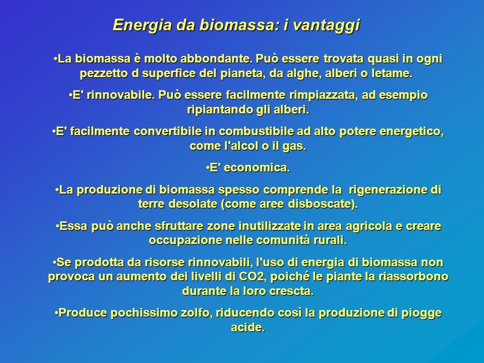 Energia da biomassa: i vantaggi La biomassa è molto abbondante. Può essere trovata quasi in ogni pezzetto d superfice del pianeta, da alghe, alberi o