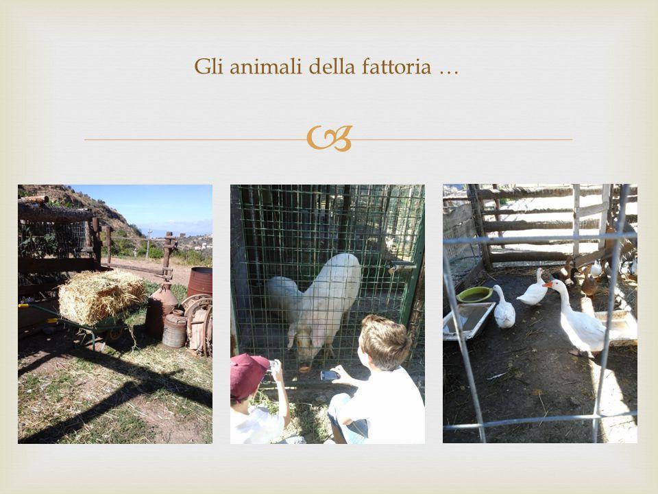  Gli animali della fattoria …