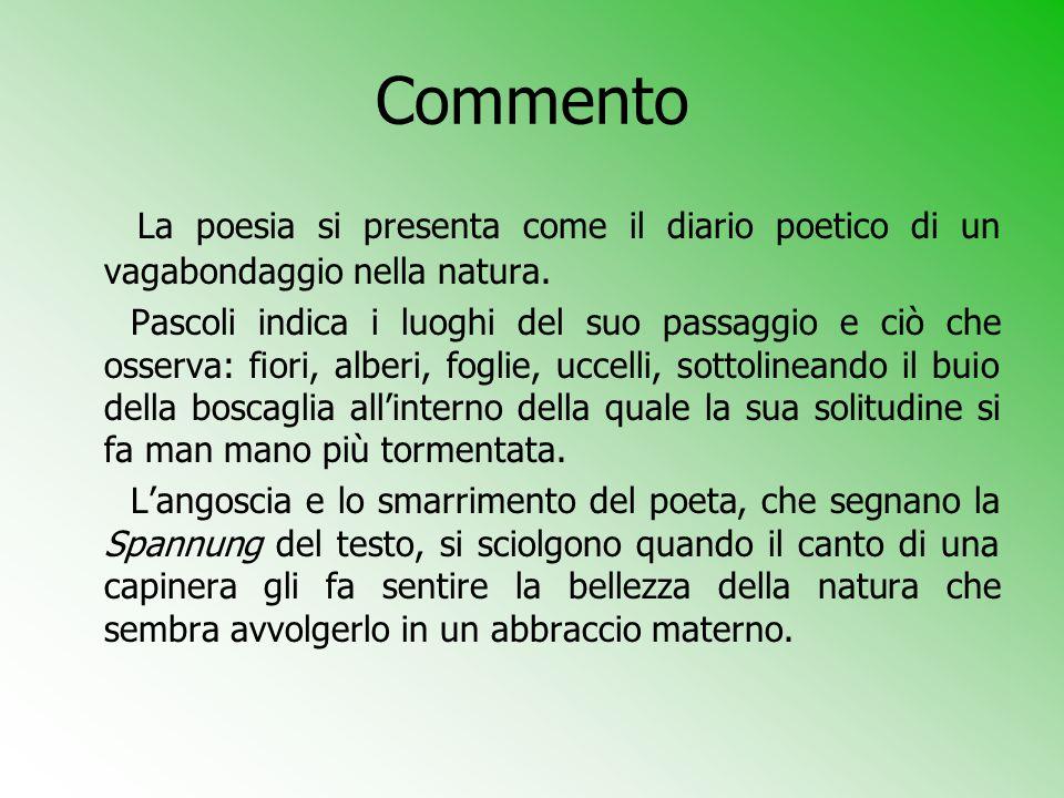 Commento La poesia si presenta come il diario poetico di un vagabondaggio nella natura. Pascoli indica i luoghi del suo passaggio e ciò che osserva: f