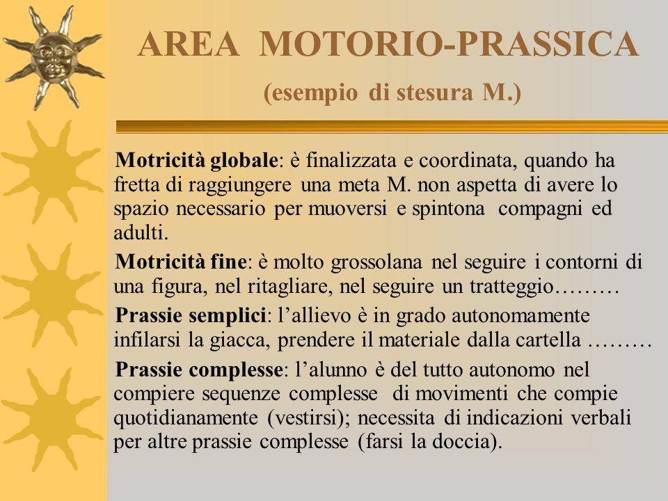 AREA MOTORIO-PRASSICA (esempio di stesura M.) Motricità globale: è finalizzata e coordinata, quando ha fretta di raggiungere una meta M. non aspetta d