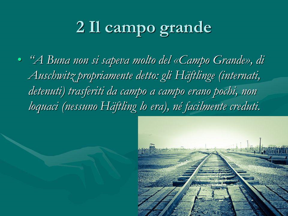 2 Il campo grande A Buna non si sapeva molto del «Campo Grande», di Auschwitz propriamente detto: gli Häftlinge (internati, detenuti) trasferiti da campo a campo erano pochi, non loquaci (nessuno Häftling lo era), né facilmente creduti. A Buna non si sapeva molto del «Campo Grande», di Auschwitz propriamente detto: gli Häftlinge (internati, detenuti) trasferiti da campo a campo erano pochi, non loquaci (nessuno Häftling lo era), né facilmente creduti.