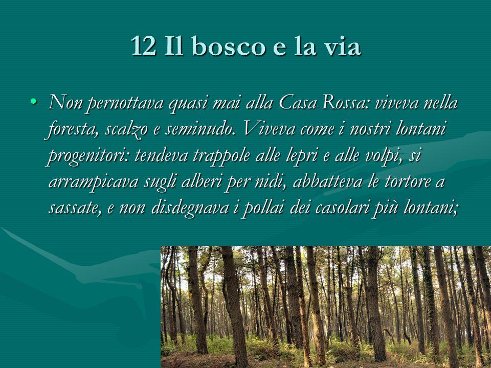 12 Il bosco e la via Non pernottava quasi mai alla Casa Rossa: viveva nella foresta, scalzo e seminudo.