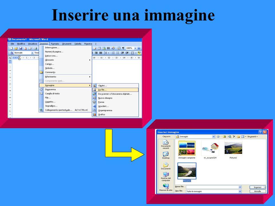 Inserire una immagine