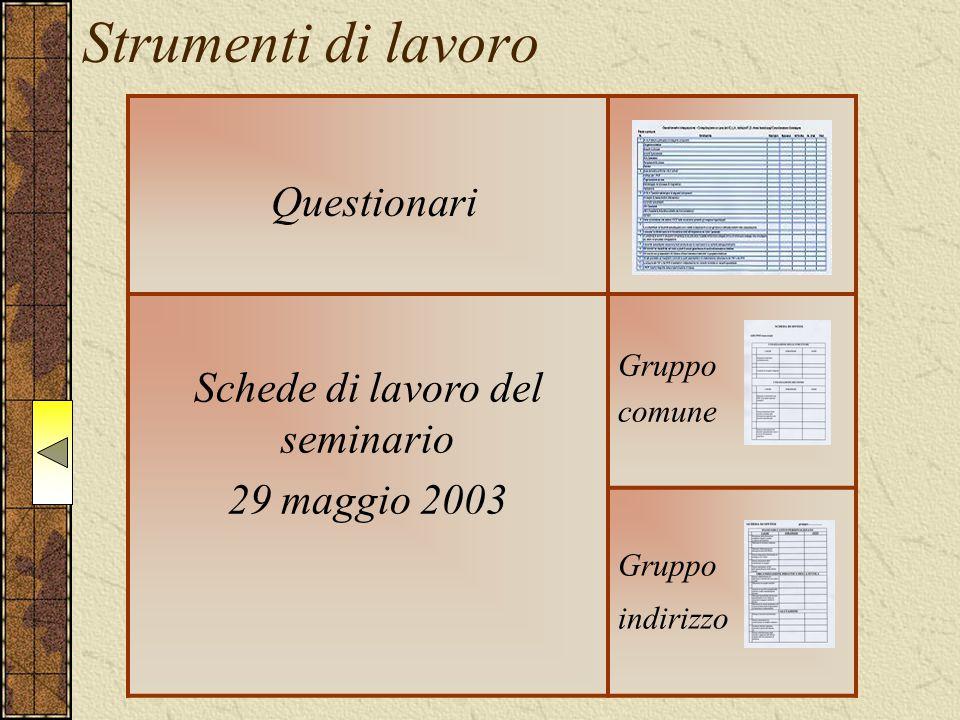 Strumenti di lavoro Questionari Schede di lavoro del seminario 29 maggio 2003 Gruppo comune Gruppo indirizzo