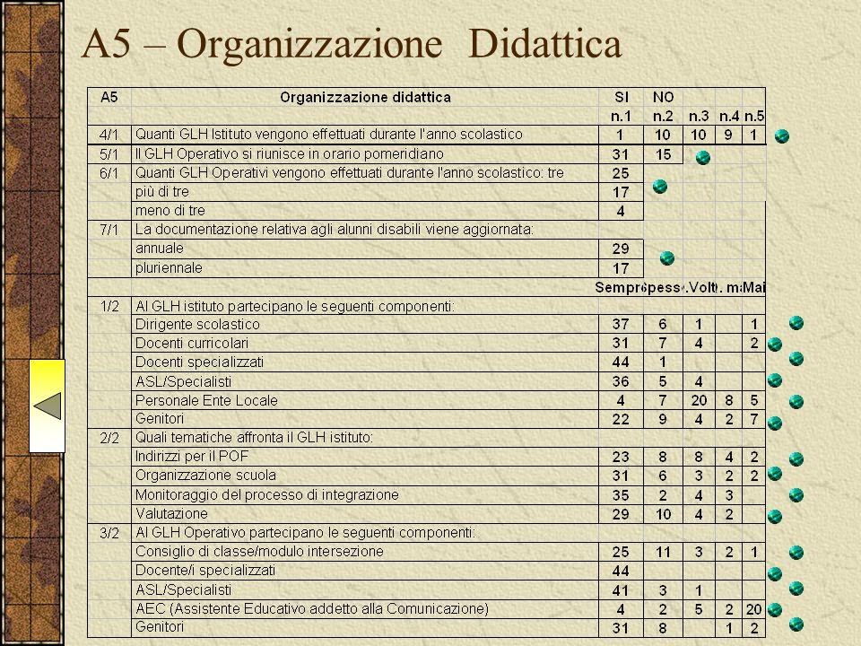 A5 – Organizzazione Didattica
