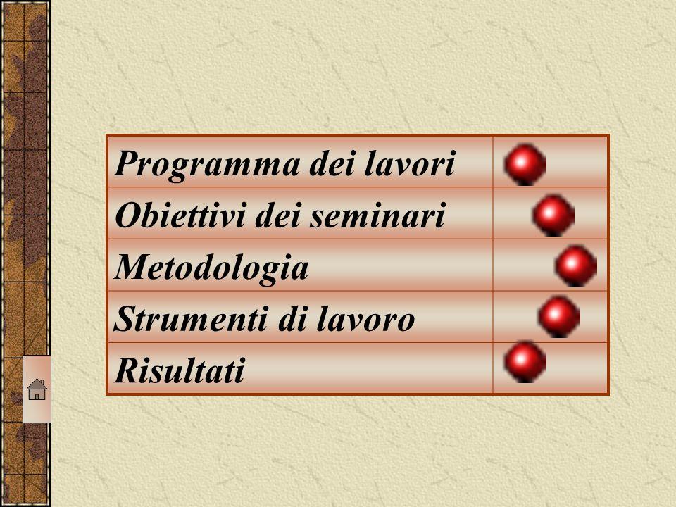 Programma dei lavori Obiettivi dei seminari Metodologia Strumenti di lavoro Risultati