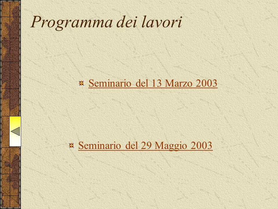 Seminario del 13 Marzo 2003 Seminario del 29 Maggio 2003 Programma dei lavori
