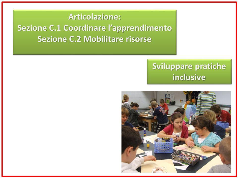 Sviluppare pratiche inclusive Articolazione: Sezione C.1 Coordinare l'apprendimento Sezione C.2 Mobilitare risorse Articolazione: Sezione C.1 Coordina