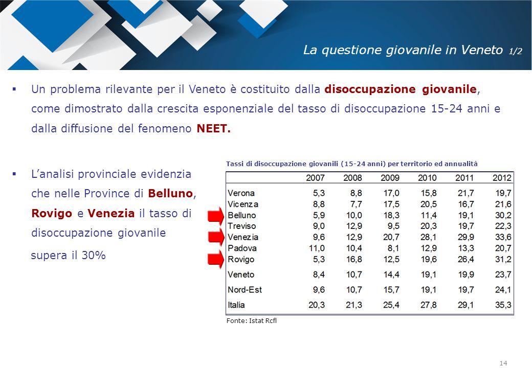 14 Tassi di disoccupazione giovanili (15-24 anni) per territorio ed annualità Fonte: Istat Rcfl  Un problema rilevante per il Veneto è costituito dal