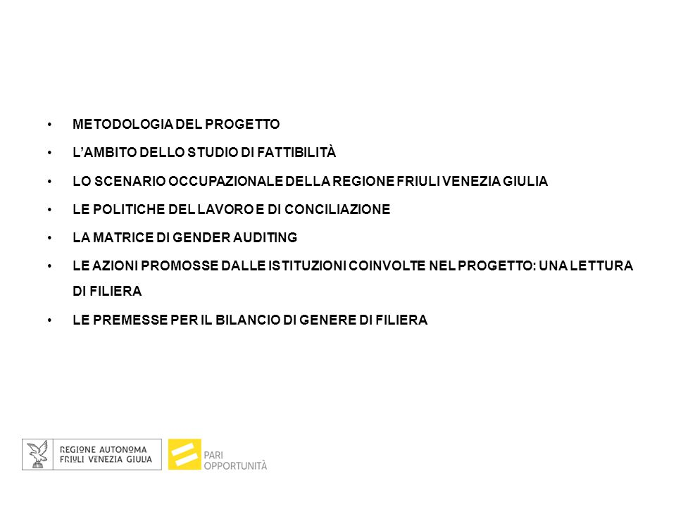 METODOLOGIA DEL PROGETTO L'AMBITO DELLO STUDIO DI FATTIBILITÀ LO SCENARIO OCCUPAZIONALE DELLA REGIONE FRIULI VENEZIA GIULIA LE POLITICHE DEL LAVORO E DI CONCILIAZIONE LA MATRICE DI GENDER AUDITING LE AZIONI PROMOSSE DALLE ISTITUZIONI COINVOLTE NEL PROGETTO: UNA LETTURA DI FILIERA LE PREMESSE PER IL BILANCIO DI GENERE DI FILIERA