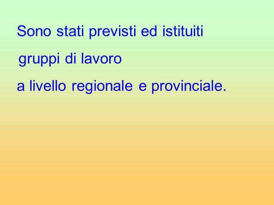 Sono stati previsti ed istituiti gruppi di lavoro a livello regionale e provinciale.
