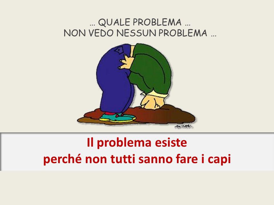 … QUALE PROBLEMA … NON VEDO NESSUN PROBLEMA … Il problema esiste perché non tutti sanno fare i capi
