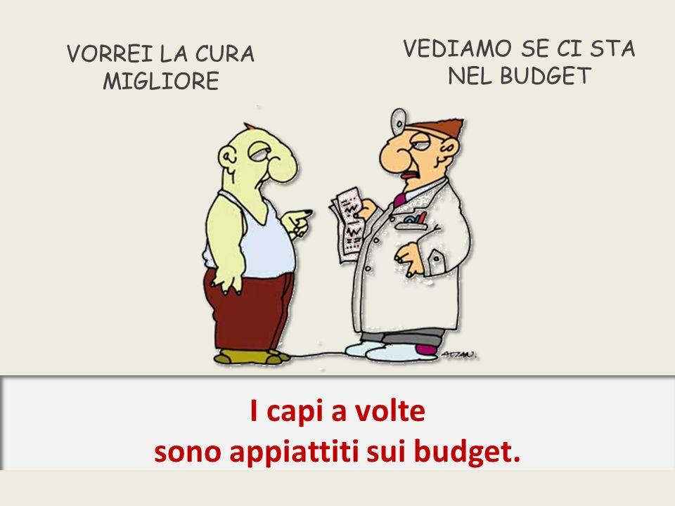 VORREI LA CURA MIGLIORE VEDIAMO SE CI STA NEL BUDGET I capi a volte sono appiattiti sui budget.