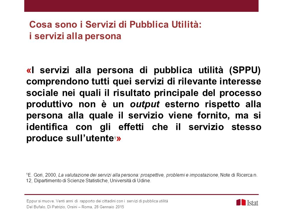 Cosa sono i Servizi di Pubblica Utilità: i servizi alla persona «I servizi alla persona di pubblica utilità (SPPU) comprendono tutti quei servizi di r