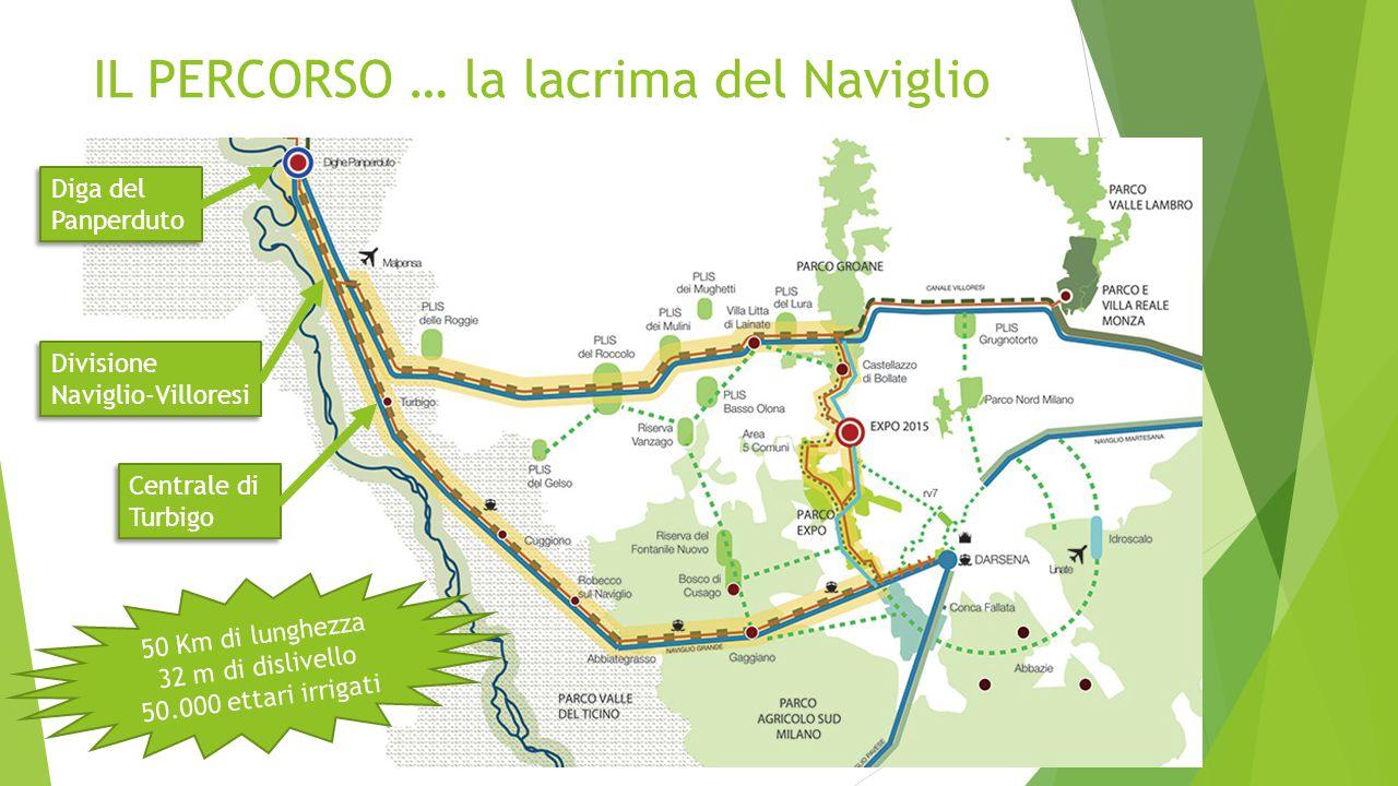 IL PERCORSO … la lacrima del Naviglio Diga del Panperduto Divisione Naviglio-Villoresi Centrale di Turbigo 50 Km di lunghezza 32 m di dislivello 50.00