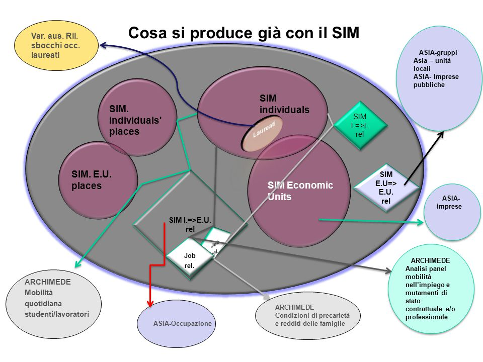 SIM Economic Units SIM individuals SIM.
