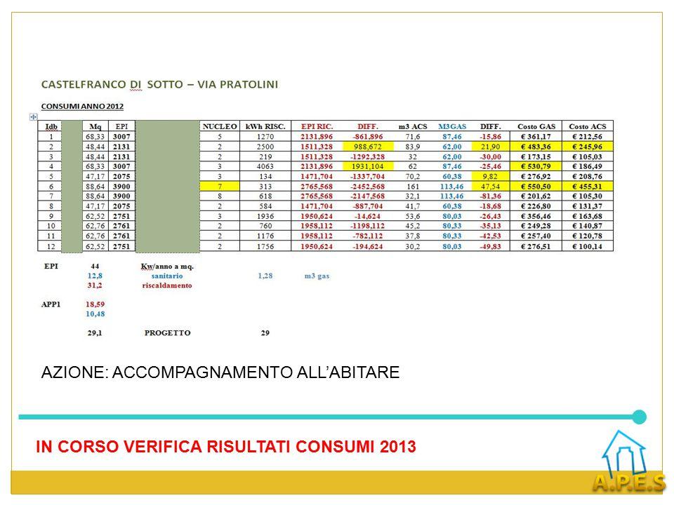 IN CORSO VERIFICA RISULTATI CONSUMI 2013 AZIONE: ACCOMPAGNAMENTO ALL'ABITARE